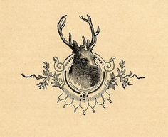framed deer head #design #graphic