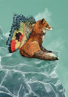 Sandra Dieckmann #illustration #fox #animals