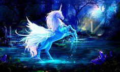 Fantasy Forest Horse Wallpaper Hd For Desktop – WallpapersBae