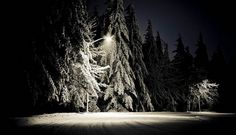 blanket | Flickr - Photo Sharing! #winter #photography #snow #oregon