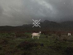Dribbble - Scotland by Julius Seniūnas