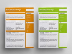 Free Clean Flat CV Template with 6 Color Variations