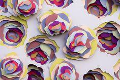 Maud Vantours FR | flora #flower #paper