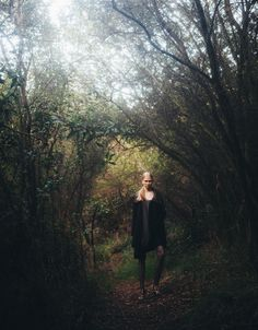 #forest#trees#model