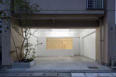 Gallery Y Membrane