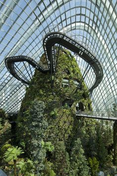 CJWHO ™ (Cooled Conservatories at Gardens by the Bay in...) #design #photography #architecture #art #garden #singapore #green