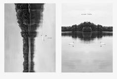 #lake #swan PHOTOGRAPHIE © [ catrin mackowski ]