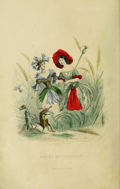 The Flowers Personified (1847) | The Public Domain Review #illustration #1847