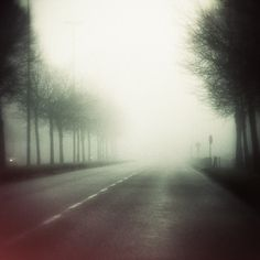 DANIEL JOURNAL #fog #johansson #mist #photography #daniel