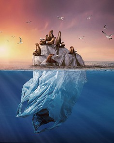 Surreal and Dreamlike Photo Manipulations by Andreas Häggkvist