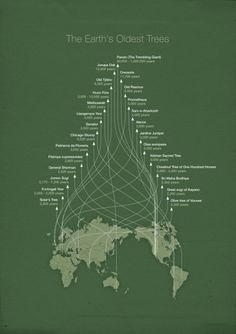 40 Beautiful InfoGraphic Designs // WellMedicated #infographic #type #poster