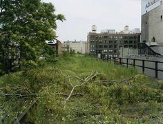 Joel Sternfeld | Friends of the High Line #sternfeld #line #joel #nature #york #nyc #high #new