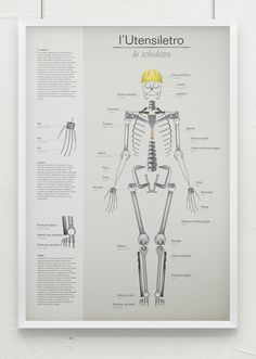 Multipurpose infographic poster Tools/Skeleton #infographic #poster #graphic #skeleton #stools