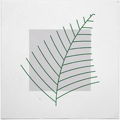 #290 Fern – A new minimal geometric composition each day