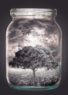 Bottled Life #universe #fantasy #tree #photo #microcosm #world #jar #manipulation #collage #life