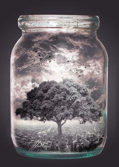 Bottled Life #universe #fantasy #tree #photo #microcosm #world #jar #manipulation #collage #life
