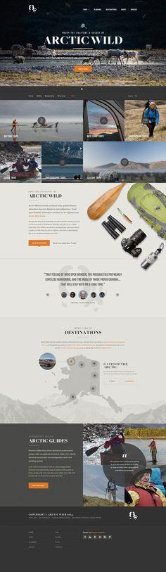 Arctic WIld by Elegant Seagulls #webdesign #website #wide #explore