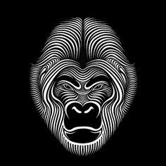 Looks like good Illustrations by Patrick Seymour #illustration #gorilla