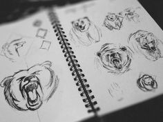 WIP Bear Prelim Sketches #design #hand drawn #drawing #sketches
