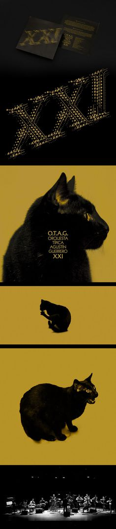 Tango album design OTAG XXI #album #edition #digipack #argentina #silver #classic #packaging #retro #cat #record #mirror #musica #vinyl #otag #music #tango #special #xxi #cd