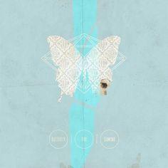 426108_240197762765552_984272429_n.jpg (imagen JPEG, 567 × 567 píxeles) #print #design #butterfly #blue #fine