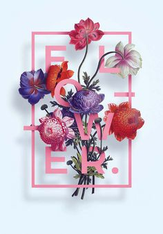 Illustration Flower Typography