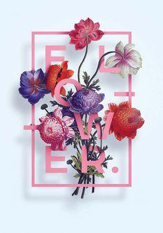 Illustration Flower Typography