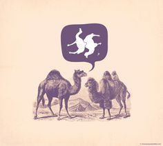 Jacques Maes – Graphic Design #camel
