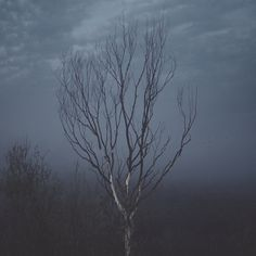 untitled on the Behance Network #photography