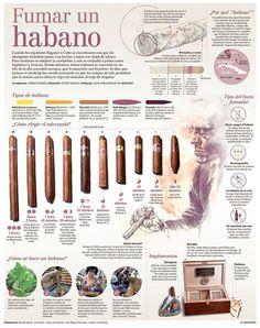 Smoking an Habano, infographic by Juan Pablo Bravo #infographics #infografias