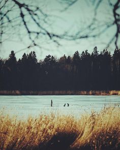 Studio Pale Grain — Journal, Winter Walk