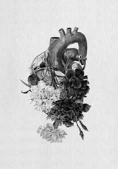 Tumblr #heart #white #black #organs #illustration #and #paper #flowers
