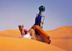 google hires camel to film liwa desert 'street' view #google