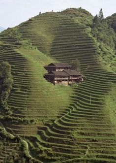 rummaging-foranswers: (via If only… / mountains... - & Gatherer #field #house #farming #architecture #hillside #agriculture #paddy