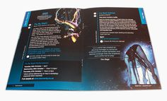 Dance City Brochure Design