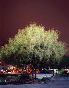 nightlandscapes-36 #night #photography #light
