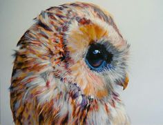 Pretty owl by Natasha