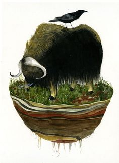 Island Biogeography (musk ox) print by Diana Sudyka #illustration #poster #mammut