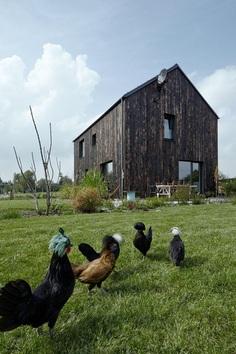 Carbon House, Mjölk Architects 2
