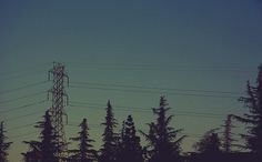 All sizes | Apricot City | Flickr - Photo Sharing! #sky #camera #retro #vintage #film #sunset #trees