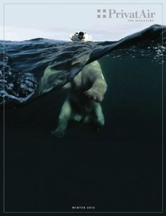this isn't happiness™ (Winter 2012)  #bear #polar #underwater
