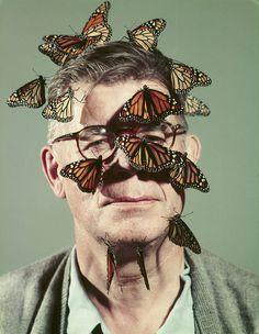 tumblr_mz7lv4rlmq1qzyxjro1_1280.jpg (1120×1444) #butterflies #headshot #portrait #face #weird