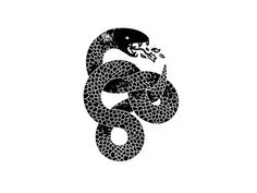 Black Mamba #illustration #snake