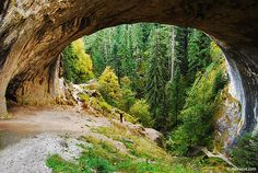 (1) Tumblr #mountain #cave #nature #forest #green
