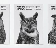 Macba ruiz+company