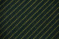 Almond Trees #pattern #nature