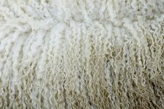 wool #wool #sheep #white