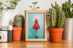 Frame mockup with cactus decoration Free Psd. See more inspiration related to Flower, Frame, Mockup, Floral, Wood, Template, Camera, Table, Floral frame, Mock up, Plant, Decoration, Creative, Flower frame, Interior, Cactus, Plants, Decorative, Wooden, Creativity, Pot, Up, Decor, Wood frame, Wooden table, Flower pot and Mock on Freepik.