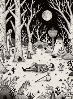 night, woods, camping, fantasy, illustration