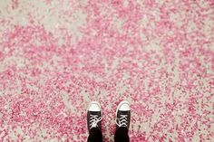 All sizes   the Sea of Pink   Flickr - Photo Sharing!
